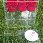 Акриловая коробка для роз